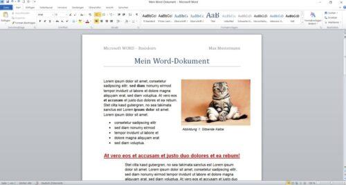 MS Word Basis 2